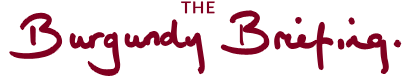 The Burgundy Briefing Logo